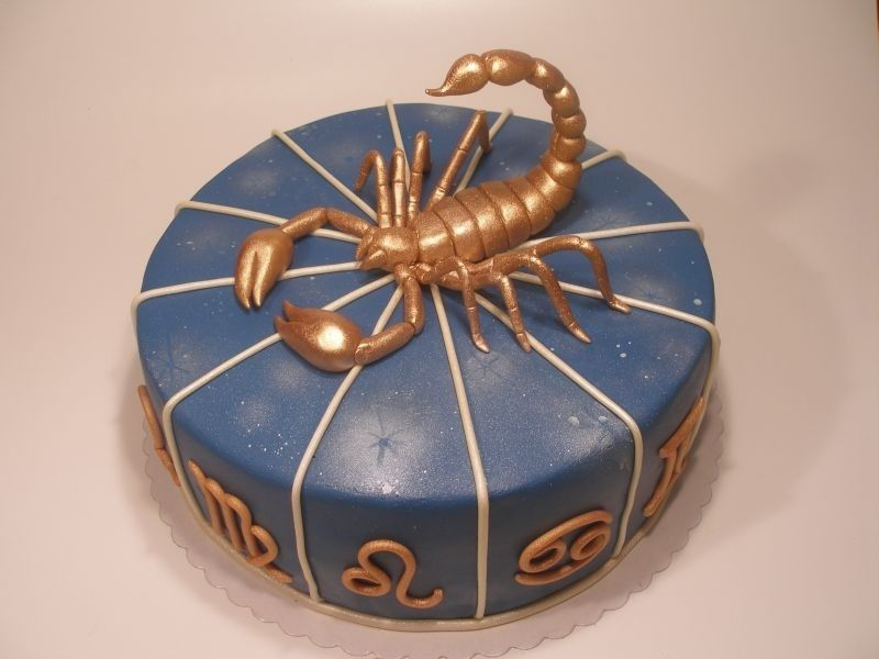 Scorpion Birthday Cake |