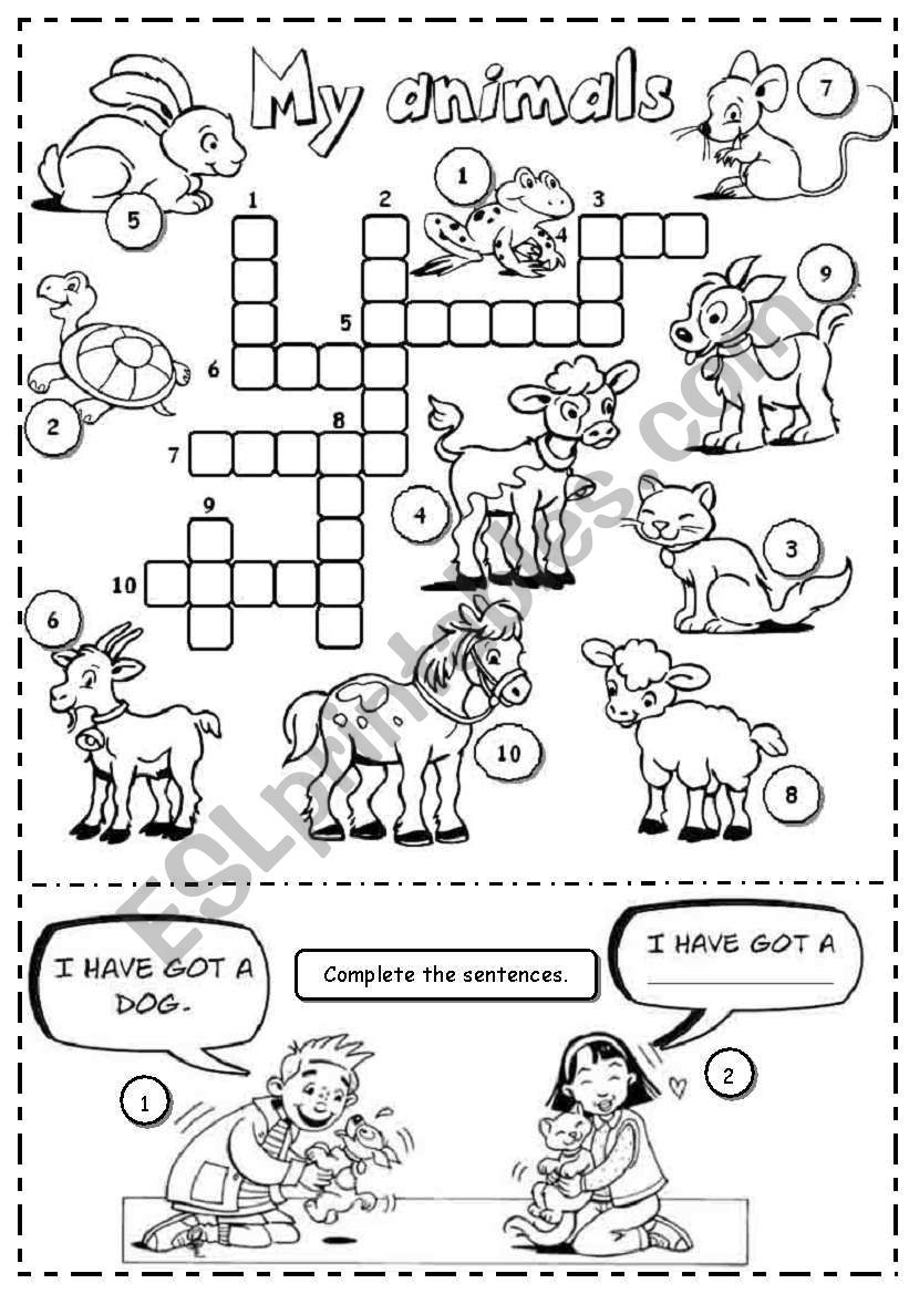 Do the crossword on animals and complete the sentences