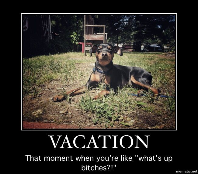 Vacation BigE MM MinPin Meme