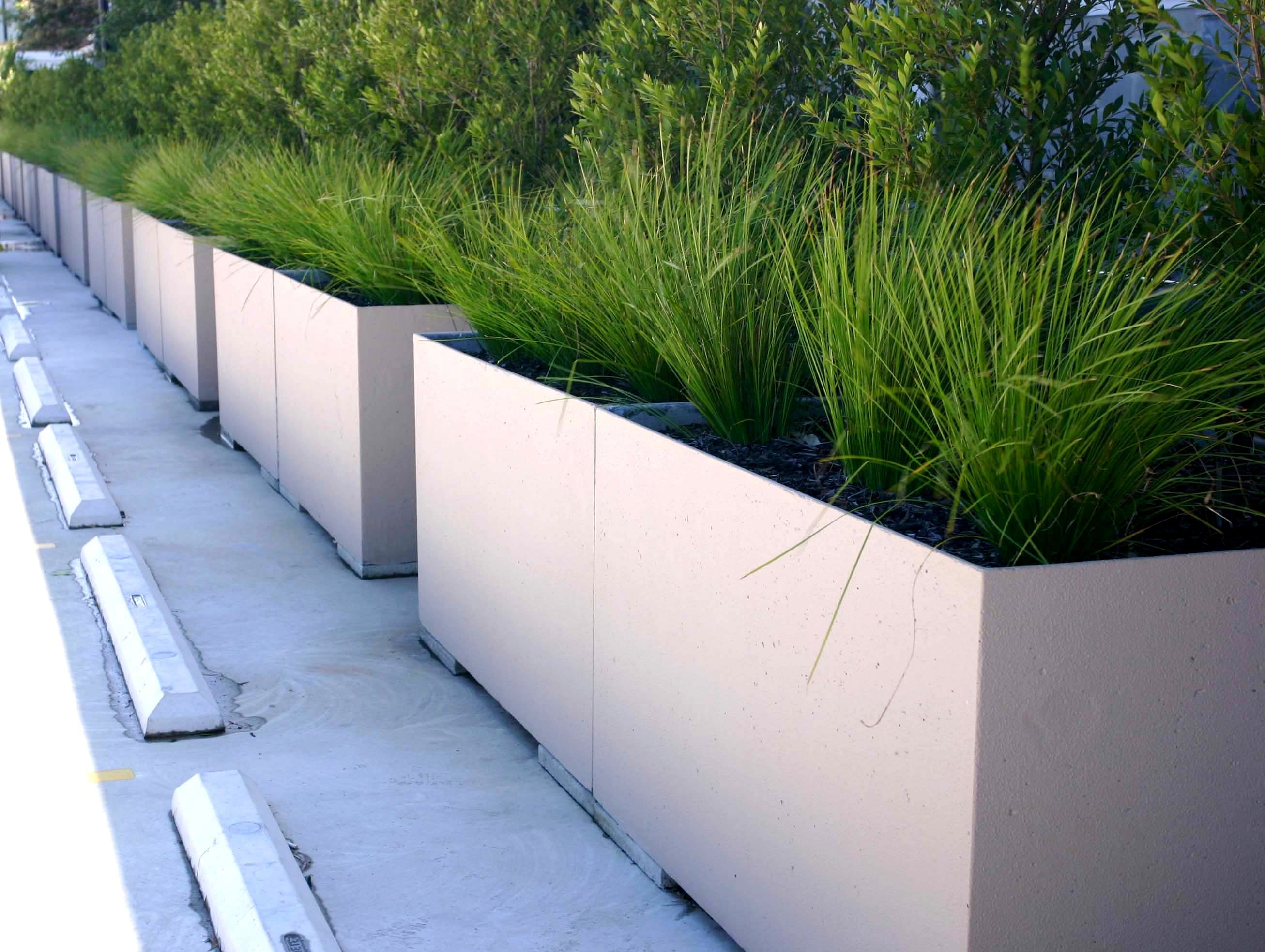 Concrete Planter Boxes In Rectangular Shape Has White Colors Finishing Completed With Green Grass Concrete Planter Boxes Diy Concrete Planters Concrete Garden
