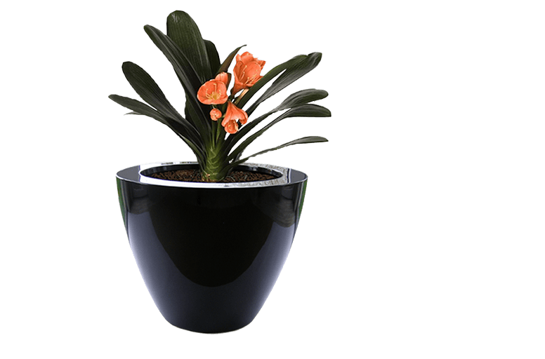 Doniczki Ogrodowe Duze Do Salonu Na Taras I Balkon Donice Meble Pl Planters Plants Planter Pots