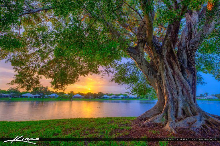 90aeae77a784a30081f927da7956cf92 - Sanctuary Cove Palm Beach Gardens Florida