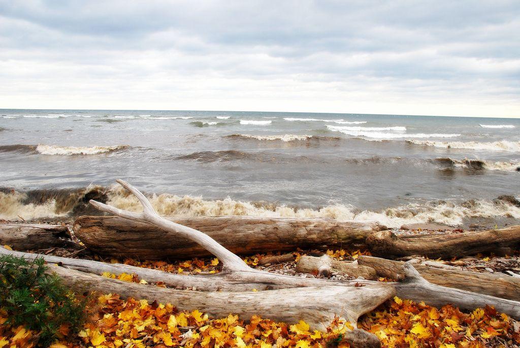 ocean + autumn |  Lake Ontario