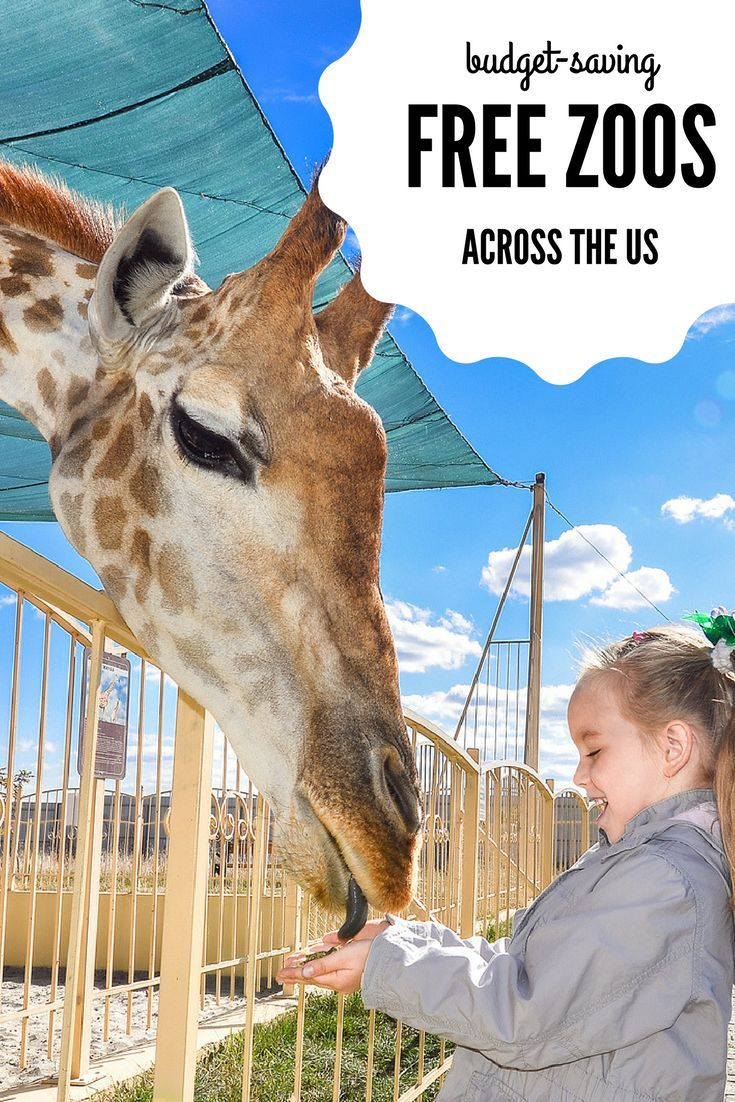 Where can I find a free zoo? Free Zoos Across the US