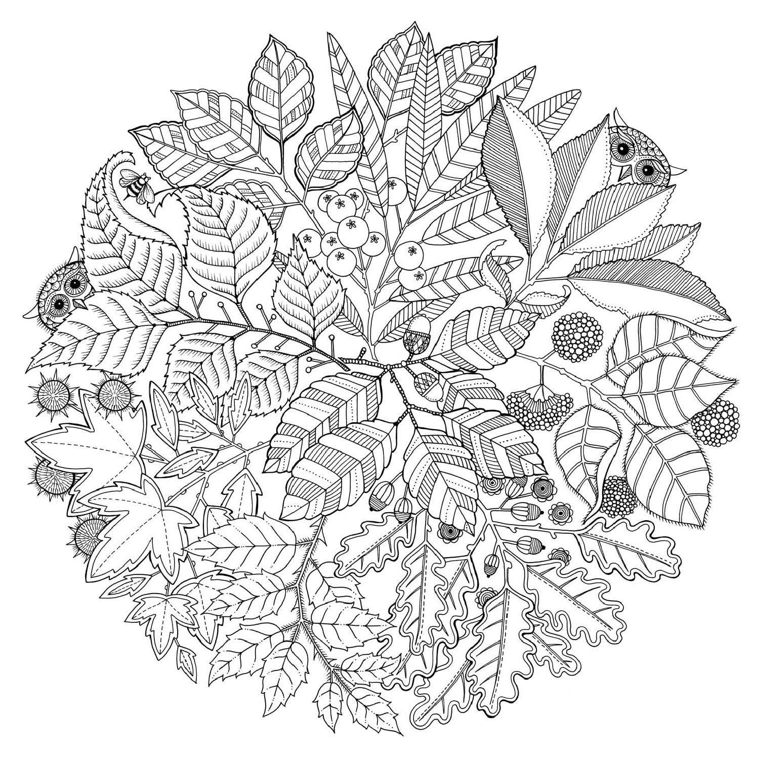 El Jardín Secreto Mtm Editores Abstract Coloring Pages Mandala Coloring Pages Mandala Coloring