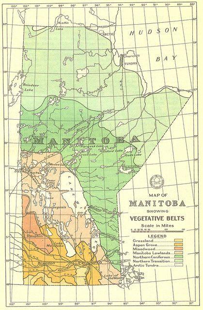 Map of Manitoba Showing Vegetative Belts (1934) | history 30