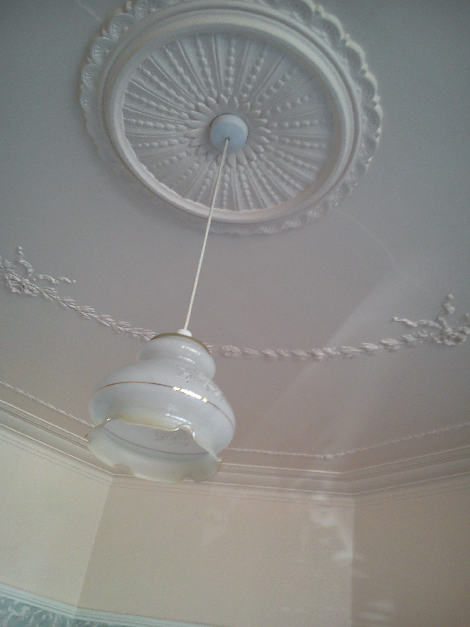 Original Edwardian ceiling rose and coving | edwardian ...