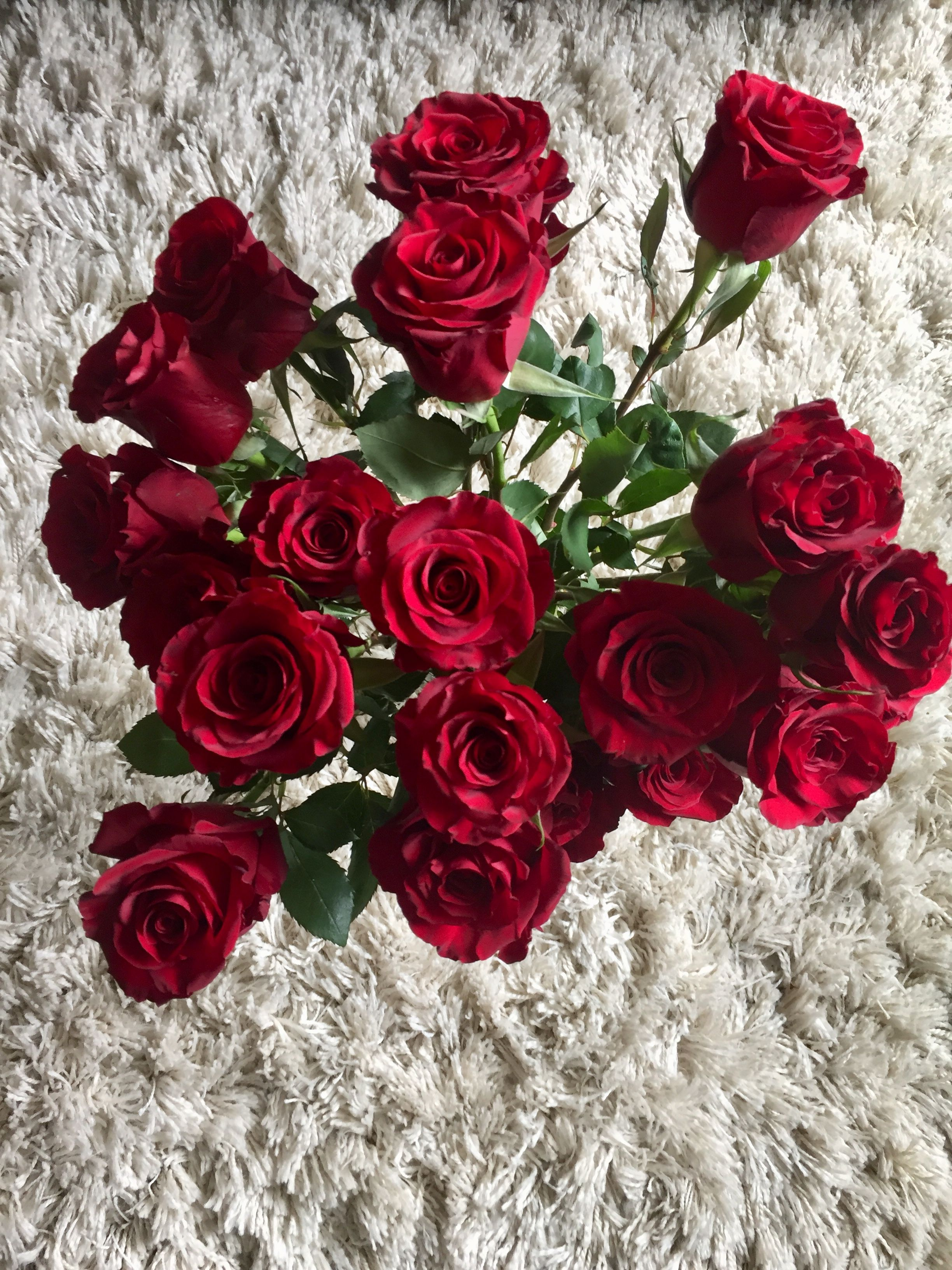 красивые картинки цветы на ватсап полиции