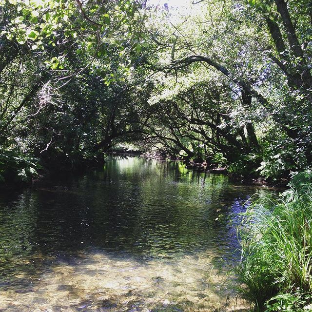 Fluss In Portugal lovely portugese river river portugal mühle water godisanartist