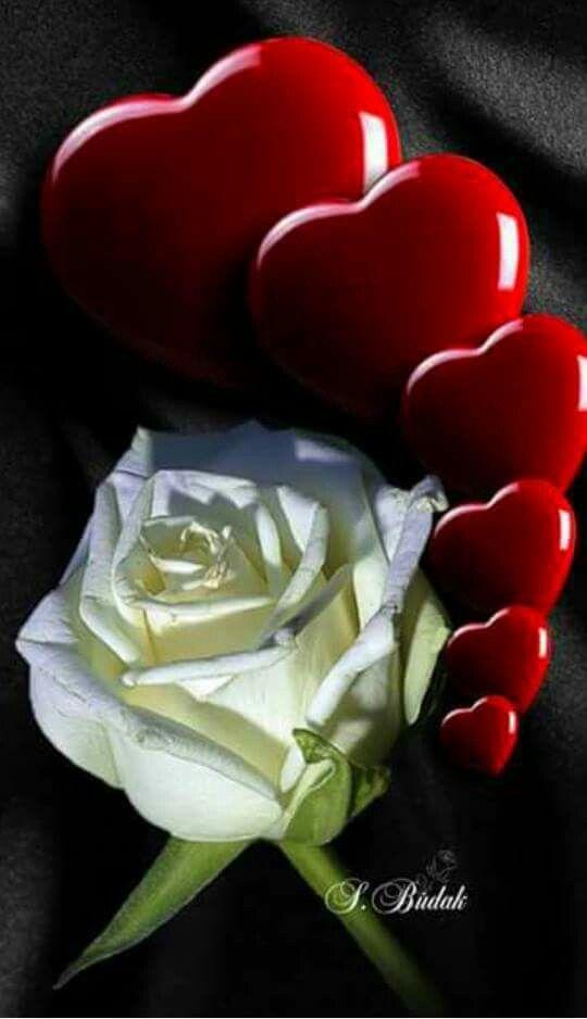 Pin De Cristina Solis En Amor Corazones Rosados Imagenes De