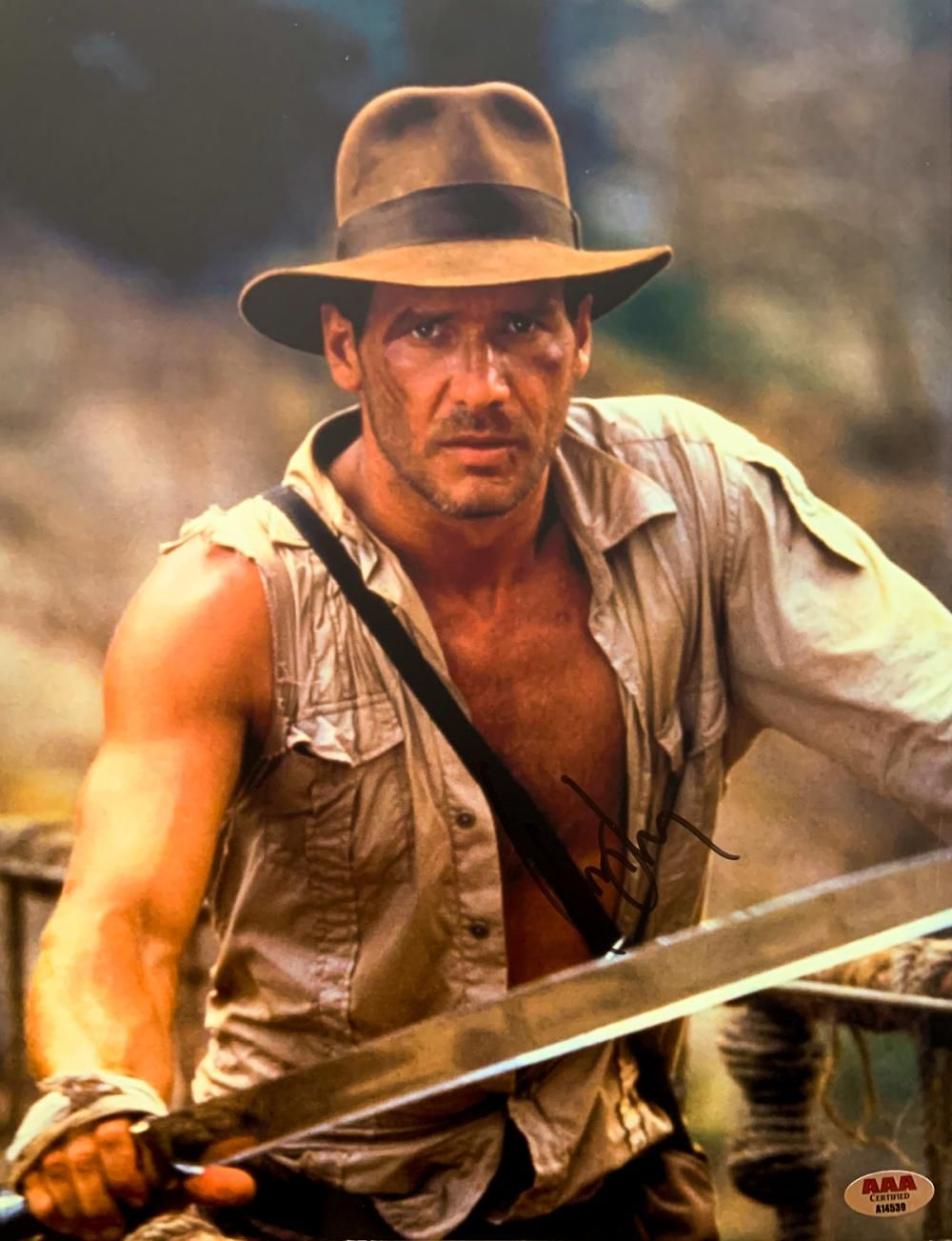 Indiana Jones Harrison Ford Signed 11x14 Photo In 2020 With