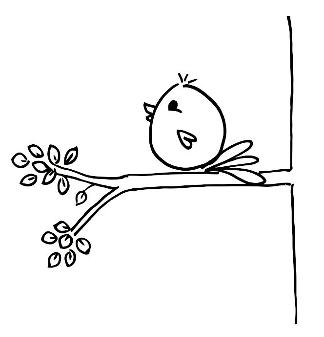 Cuando El Pajaro Canta Es Hora De Buscar Bird DrawingsEasy