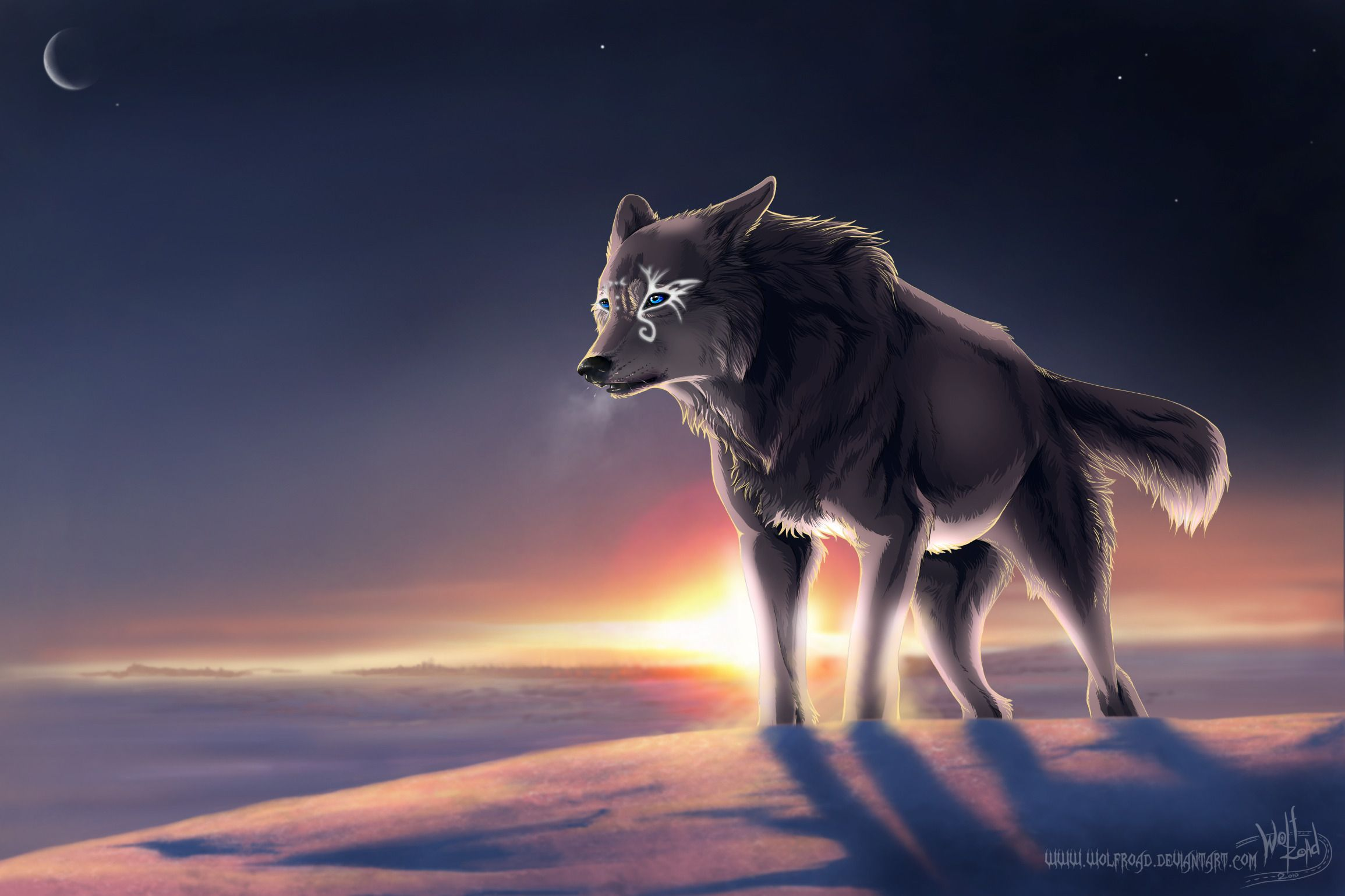 Pictures Of Magical Wolves Download Wallpaper Winter Wolf Magic