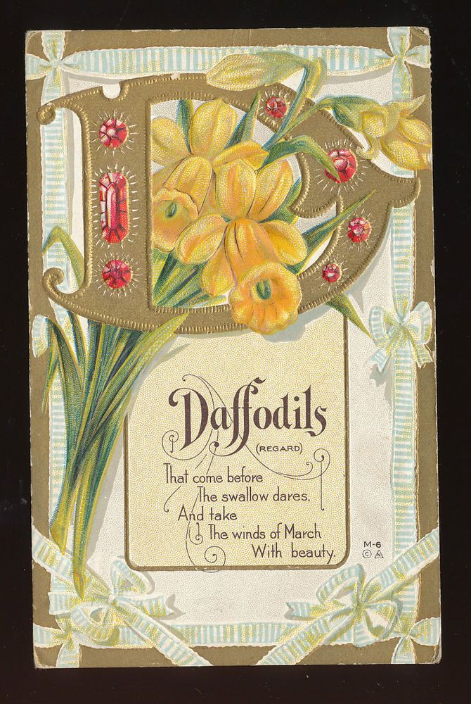 Vintage Alphabet Letter  D DaffodilsAntique Flowers Greeting