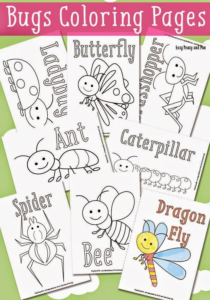 Helping Kids Grow Up: Little Bugs Coloring Pages for Kids | Kids ...