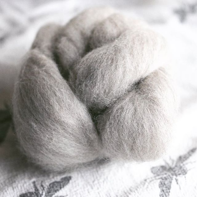 Here is a beautiful natural grey combed top - one of seven shades (4 dyed, 3 natural) that I've created. Today on my blog you can meet the man who helped me source and develop my new yarn... link in profile.