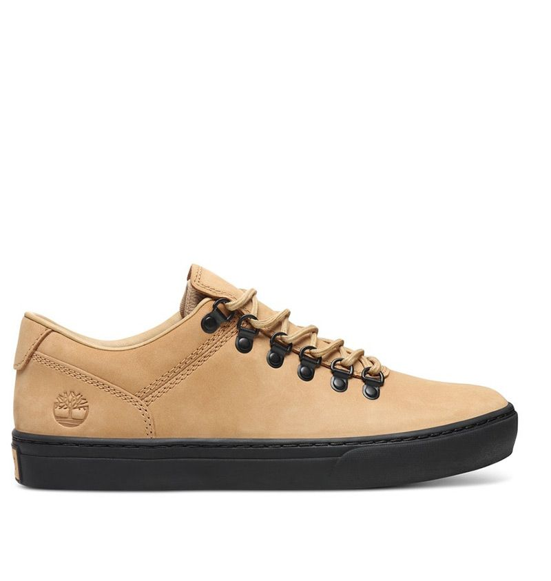 chaussures basses timberland
