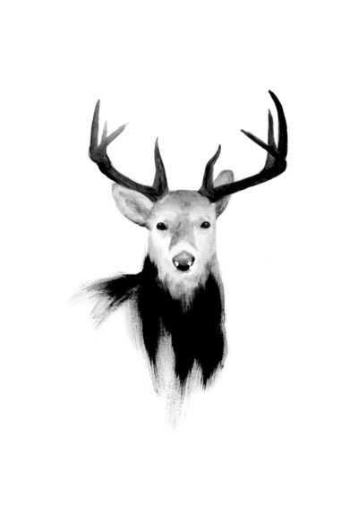 click to zoom  DEER  by Amanda Mocci