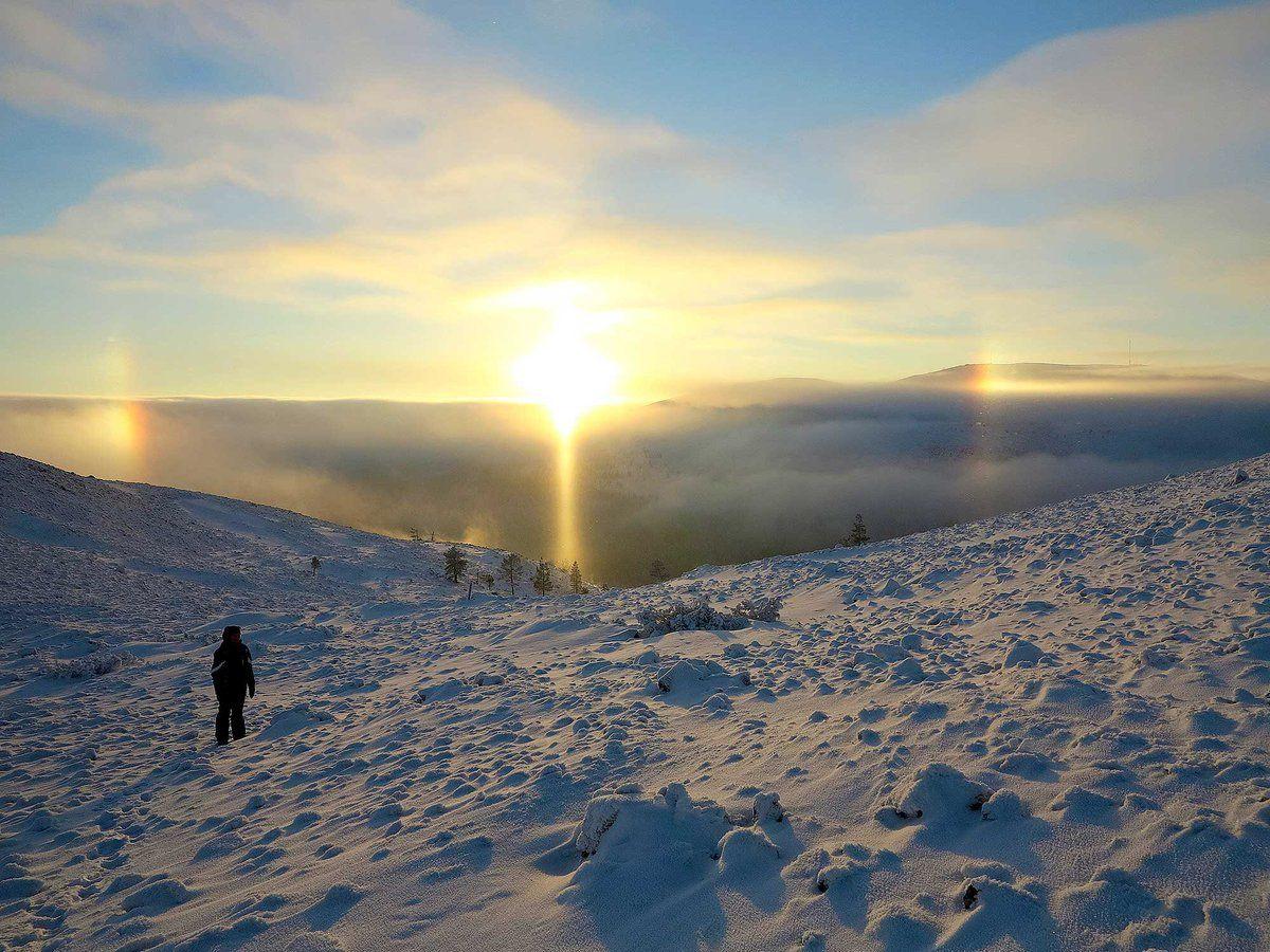 Pakkaspäivinä voi päästä ihailemaan taivaalla #haloilmiö 'tä. Ilmakehässä olevat #jääkiteet taittavat #auringonvalon kauniiksi optiseksi ilmiöksi. Kuva Urho Kekkosen kansallispuisto, Vastavalo / Seppo Alatalo #halo #taivas #jää - Luontopalvelut (@Luontopalvelut) | Twitter
