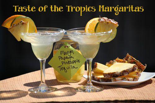 Taste of the Tropics Margarita, using mango, papaya and pineapple infused tequila