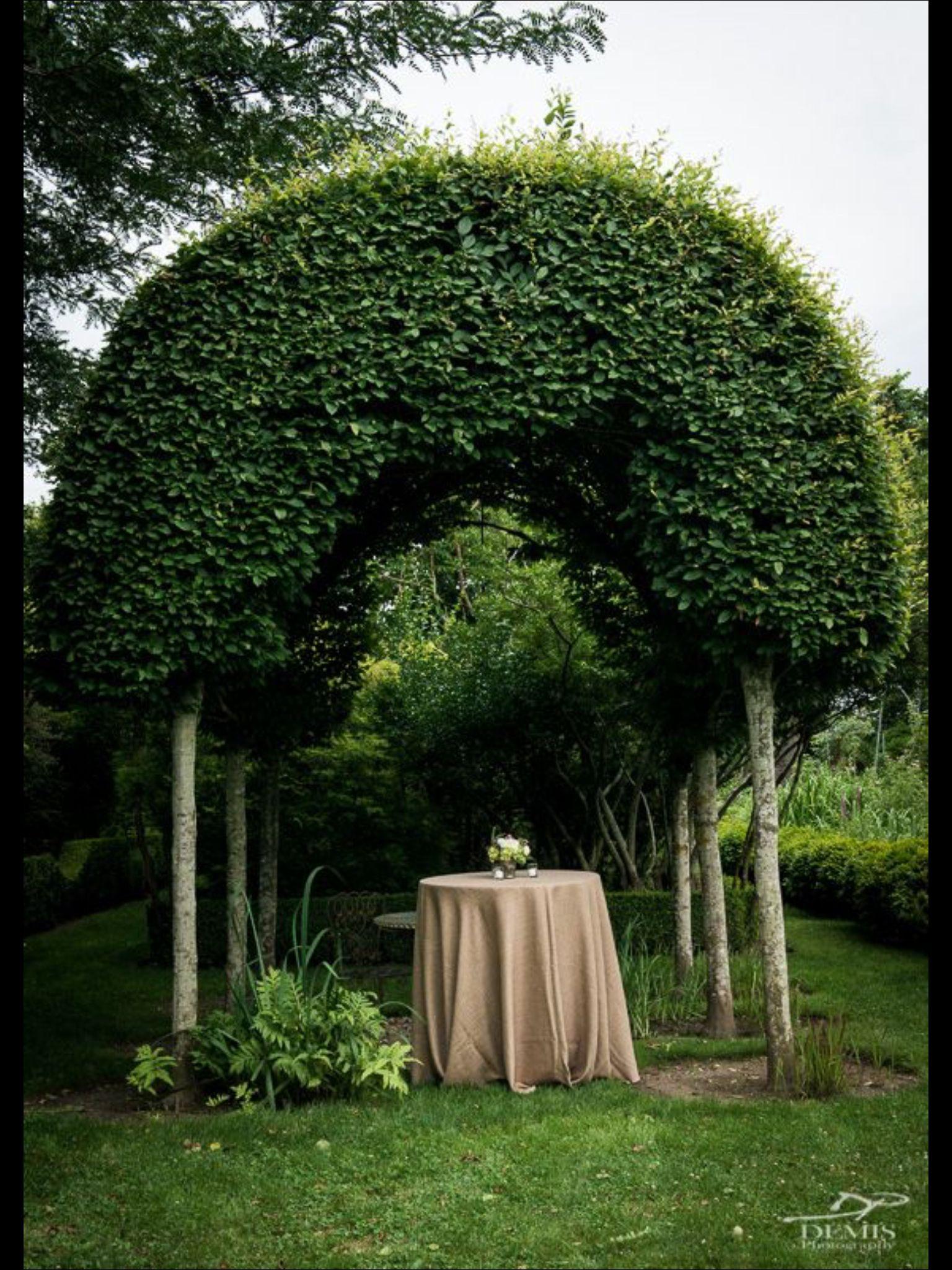 #weddings #hamptons #summer