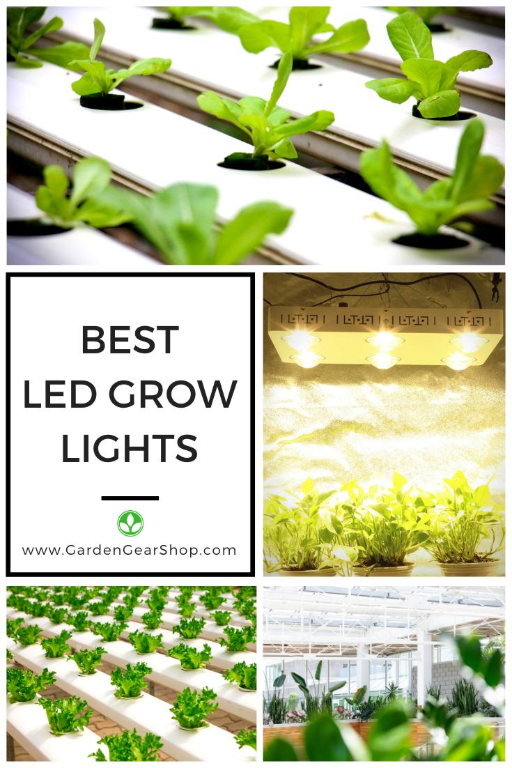 Best Led Grow Light Cf Grow Cree Cxb3590 Grow Light Led Grow Lights Best Led Grow Lights Grow Lights