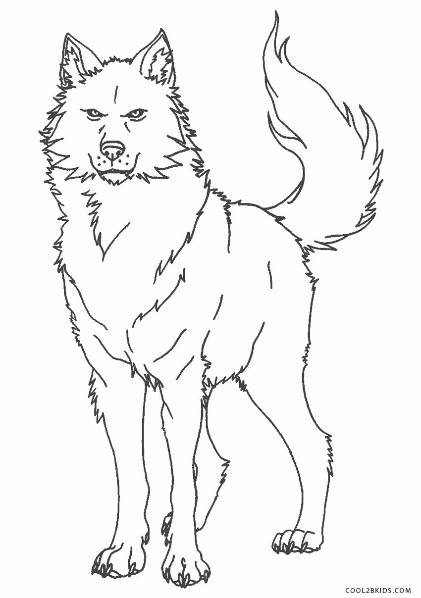Anime Wolf Coloring Pages New Free Printable Wolf Coloring Pages For Kids In 2020 Coloring Pages Coloring Pages For Kids Animal Coloring Pages
