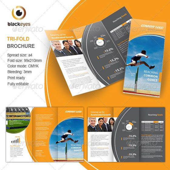 Elegant College Tri Fold Brochure Template  TriFold Newsletters