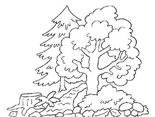 Fabulosos árboles para pintar | Pintar imágenes | Fall | Pinterest ...