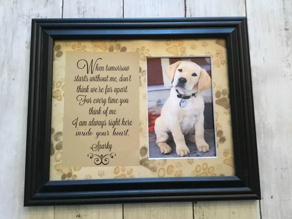 Pet Sympathy Gift Pet Loss Frame Dog Memorial Cat Memorial Personalized Pet Loss Gift Memorial For Dog Dog Passing Gift Pet Sympathy Gifts Pet Sympathy First Dance Lyrics