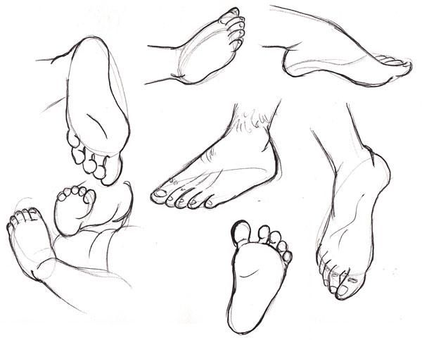 Human anatomy fundamentals: How to #draw feet http://enva.to/1oYD39h  pic.twitter.com/7iEjUKy6nv