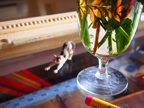 a cat,mmm,wine glass,crayon.antique mirror.