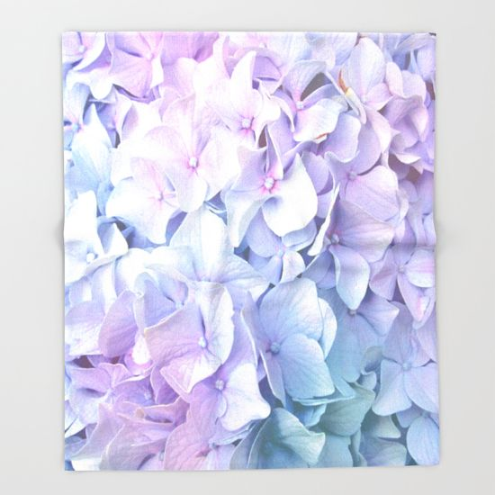 Buy Soft Pastel Hydrangea By Judy Palkimas As A High