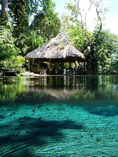 61 Ometepe Ideas Ometepe Nicaragua Nicaragua Travel