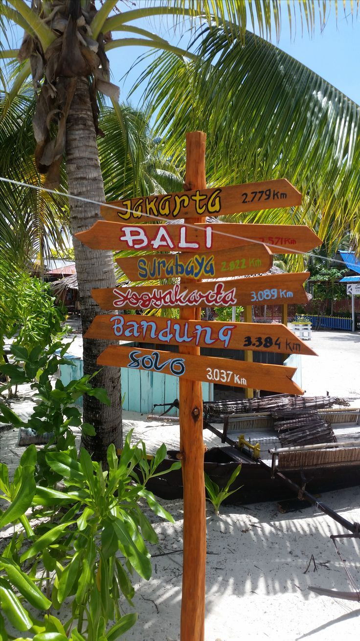 Raja Ampat, Indonesia - paradise found! - Raja Ampat Travel Guide by Drifter Planet. A group of islands that are far away from the mainland with pristine beaches, spectacular viewpoints and the richest marine biodiversity on earth – this is Raja Ampat.