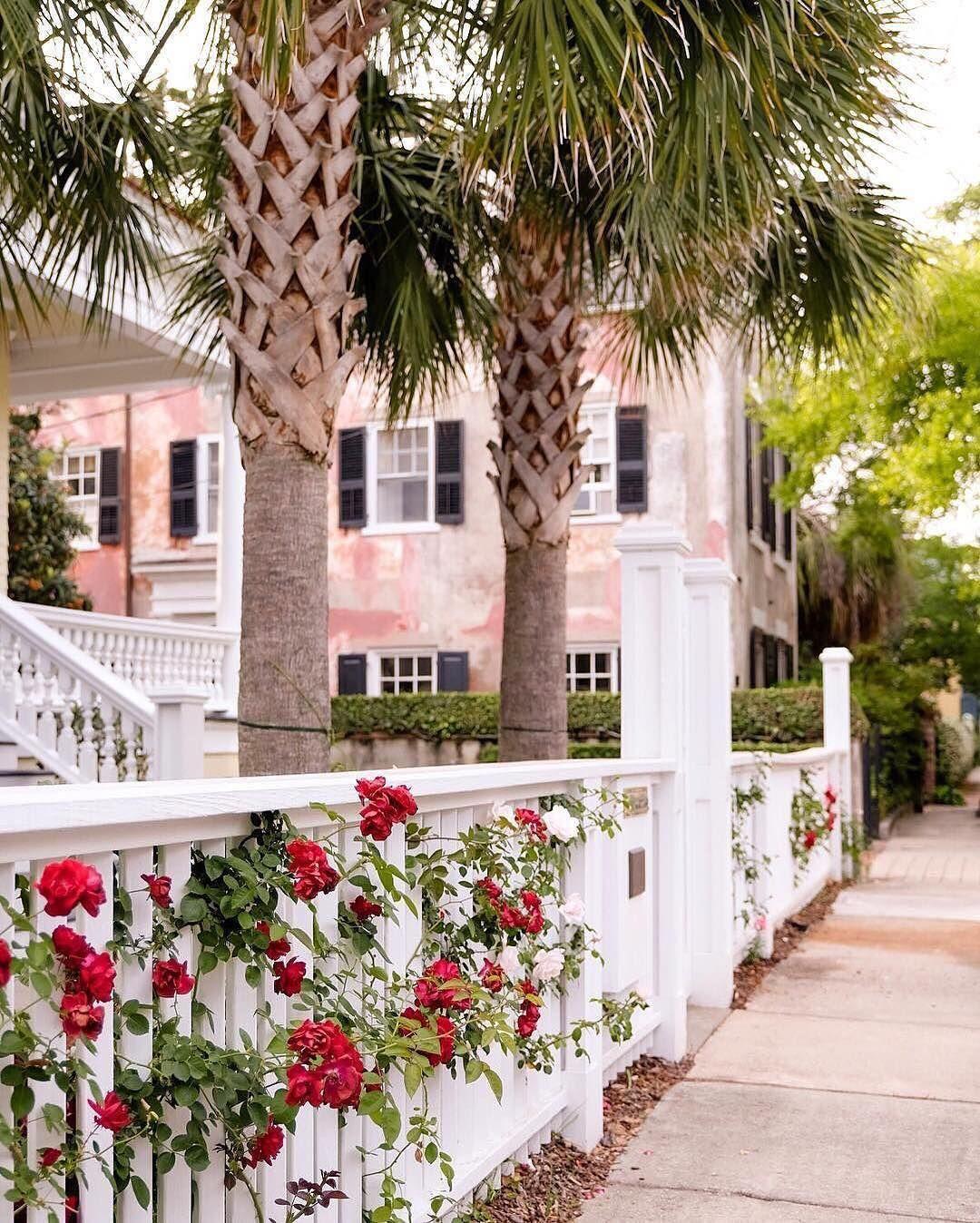 Instagram Photo By Charleston Sc Official Account May 20 2016 At 10 36am Utc South Carolina Homes Explore Charleston Charleston