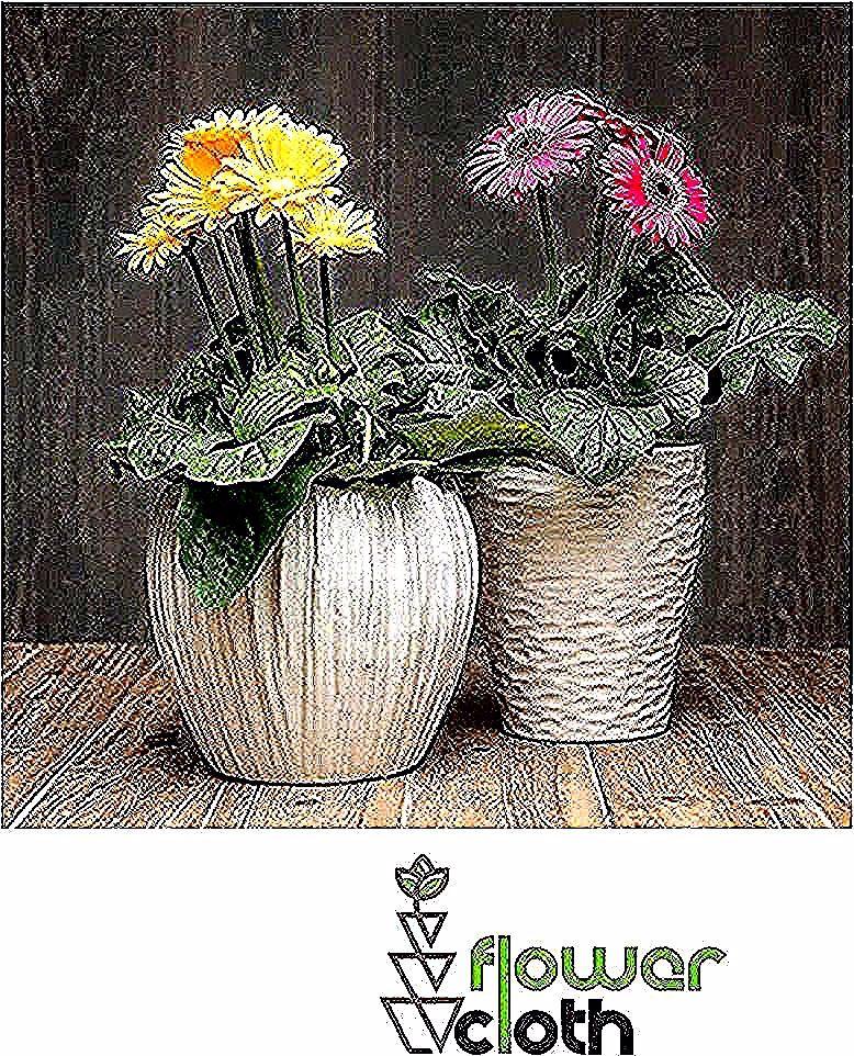 Tersedia juga ☑️Pot bunga keren ☑️Rak bunga minimalis. ☑️Dekor rumah atau kamar lebih simple ☑️Berbagai macam kaktus. ➖➖➖➖➖➖➖➖➖➖➖➖➖➖➖➖ DM for more info 😁😁😁 @flowercloth_  @flowercloth_  @flowercloth_ ➖➖➖➖➖➖➖➖➖➖➖➖➖➖➖➖ . 📞 085743881665 #tanamanindoor #garbera #bungagarbera #tanamanhias  #kayamanfaat #kaktus #suculents #suculentas #scullent #sculent #seculent #dekorasikamar #dekorkamar #dekorrumah #kaktus #dekorrumahminimalis #dekorcafe #homedecor #homesweethome  #bunga #dekorasirumah  #tanaman
