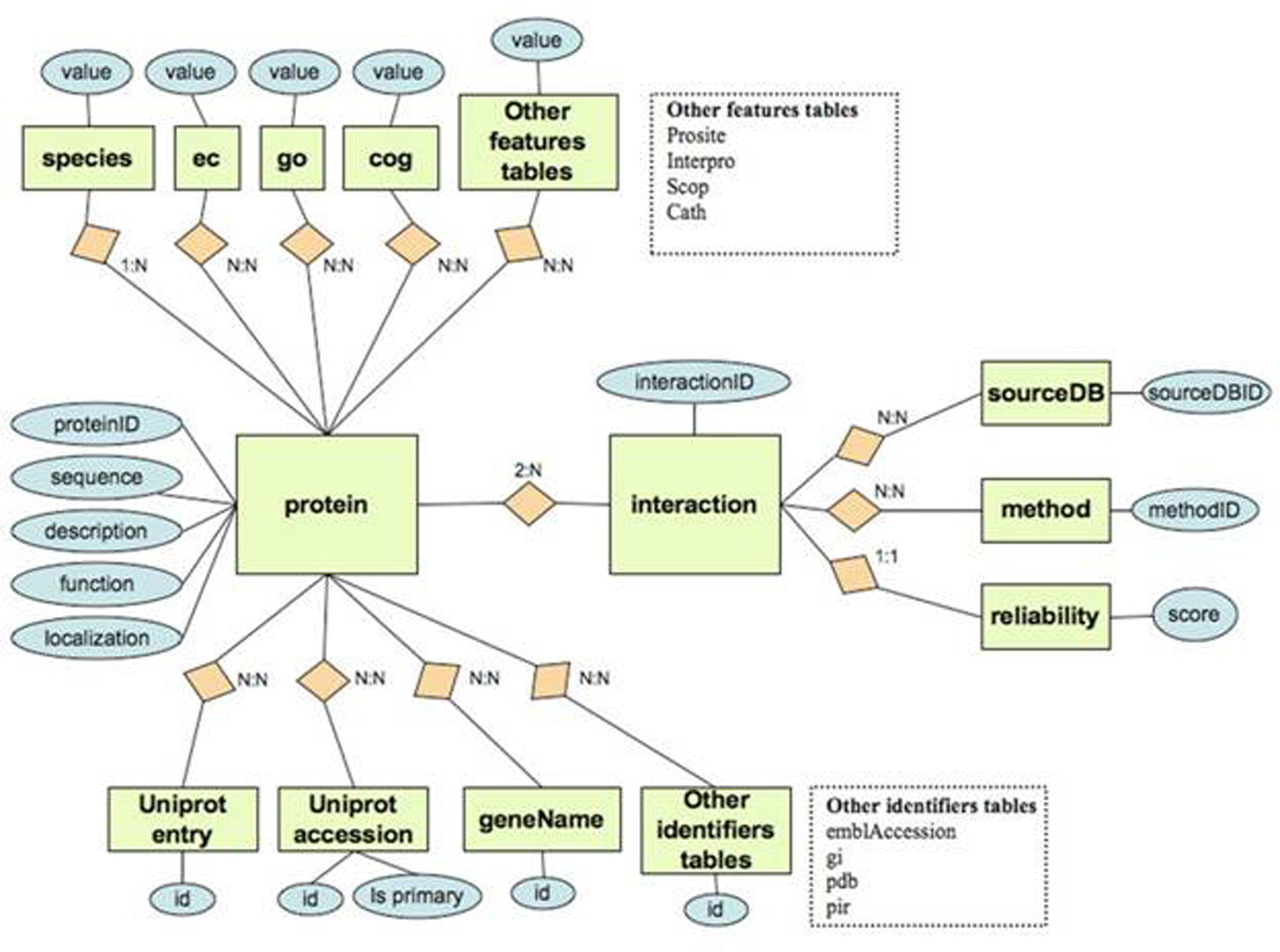 Relational database design file 1 the relational database relational database design file 1 the relational database design of the baditri Image collections