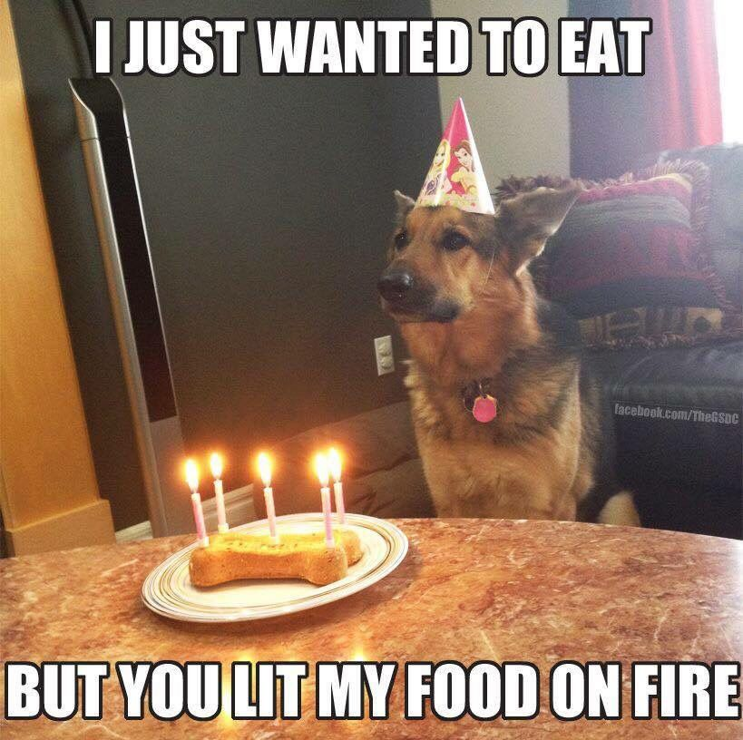 Happy birthday. But why you set my food on fire? Funny