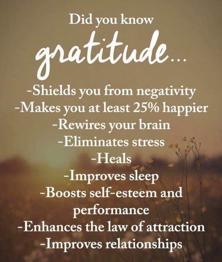 Gratitude Quotes Gratitude Grateful Bethankful Gratitude Quotes Grateful Quotes Quotes