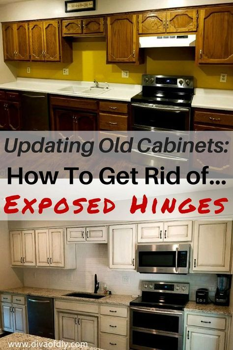 Updating Old Cabinets How To Get A Modern Look By Replacing The Doors With Hidden H Replacing Kitchen Cabinets Update Kitchen Cabinets Kitchen Cabinets Hinges