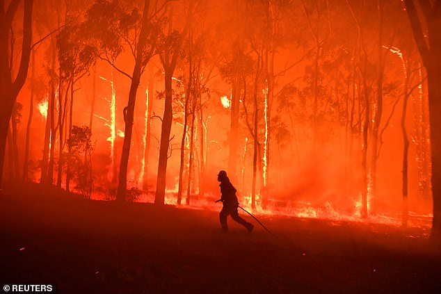 Row breaks out over real cause of Australia's bushfires in