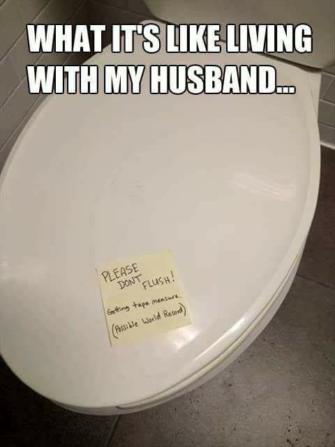 Pin By Svenja On Funny Stuff Pinterest Funny Funny Pins And Custom Bathroom Puns