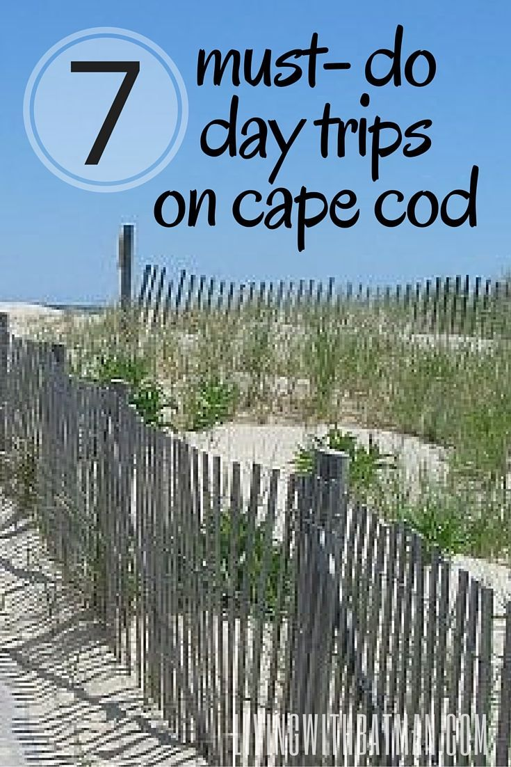 must do cape cod