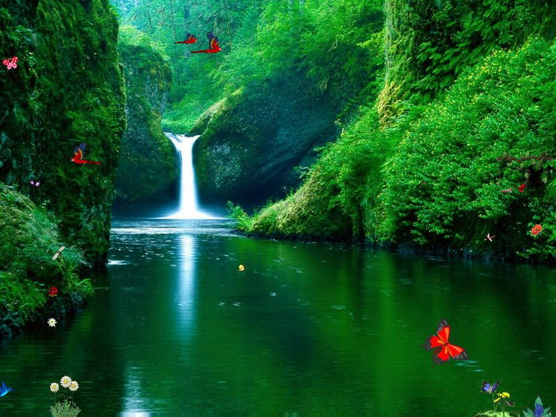 Free Animated Screensavers With Sound Free Waterfalls Screensaver Green Waterfalls Waterfall Wallpaper Beautiful Nature Punchbowl Falls