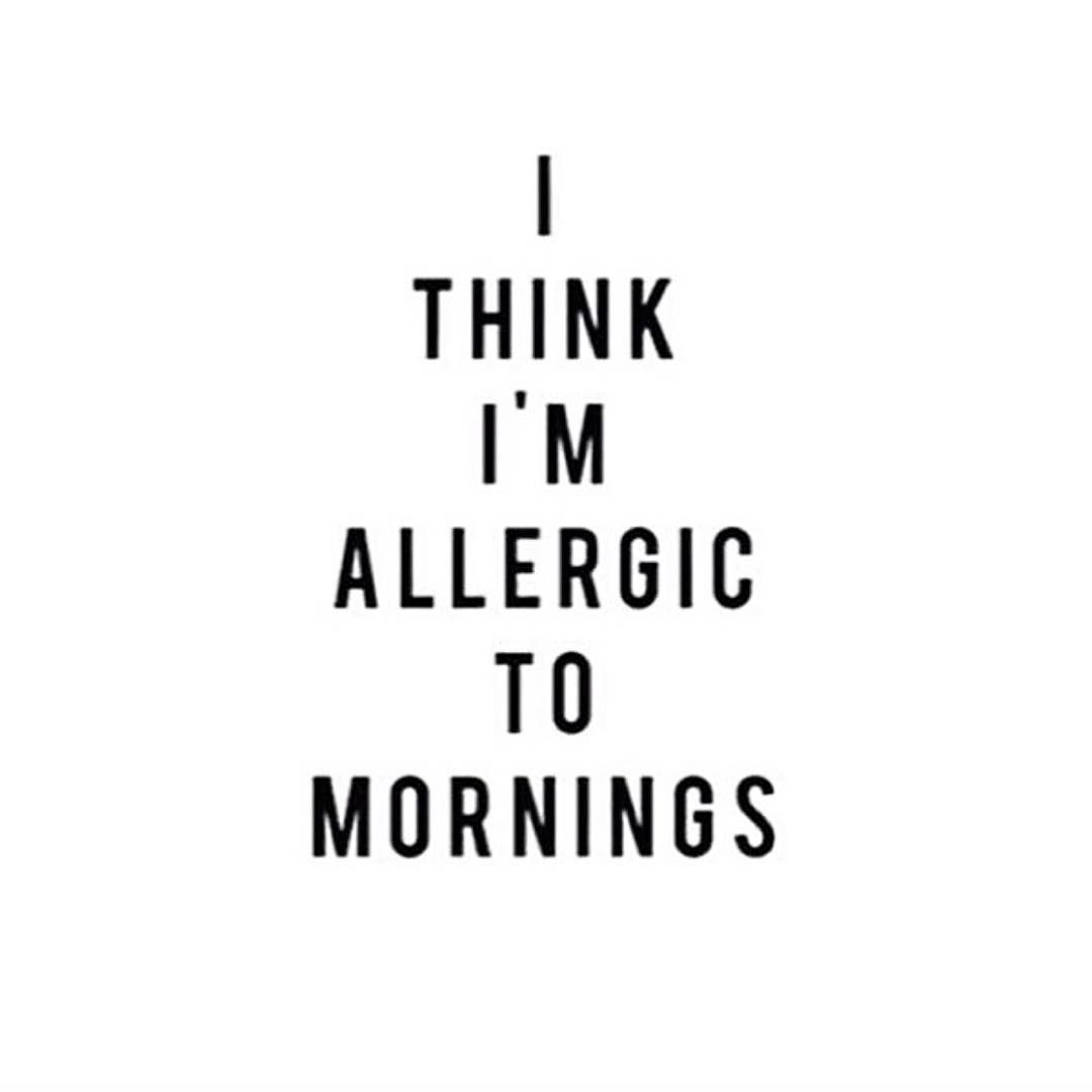 River Island On Instagram Isitfridayyet Qotd Funny Quotes Good Morning Quotes Dog Quotes Funny