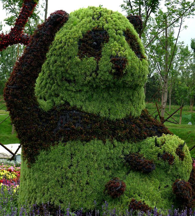 Amazing Topiary: Can You Be-leaf It? Realistic Animals Sculpted Out Of