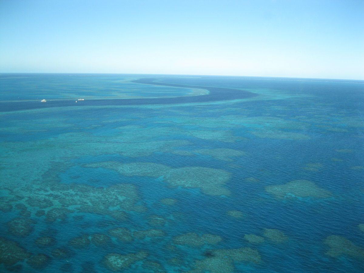 """Great Barrier Reef und """"the Street"""""""