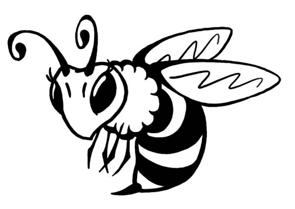 44 Honey Bee Coloring Pages Ideas Bee Coloring Pages Coloring Pages Honey Bee
