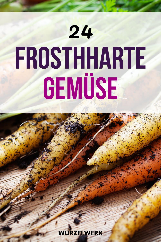 24 Gemüse, die du im Winter anbauen kannst! - My Blog #howtogrowvegetables
